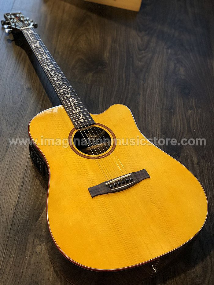 Galatasaray GT-D30 Acoustic Electric in Yellow Natural with Fishman