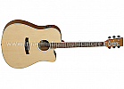 Tanglewood DBT DCE OV Discovery Series Electro Acoustic Guitar
