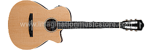 Ibanez AEG7TN NT Acoustic Electric Guitar