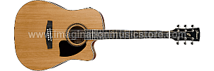 Ibanez PF17ECE-LG Acoustic Electric Guitar