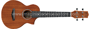 Ibanez UEW5 Acoustic Ukulele - Natural